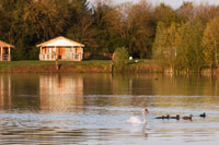 Lake Pochard Lodges