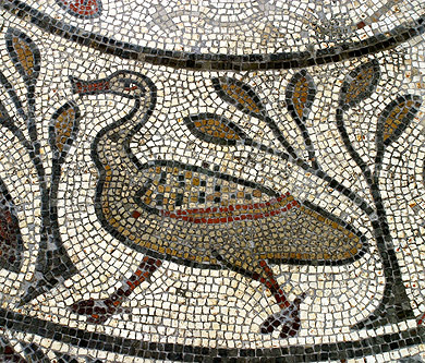 Duck mosaic at Corinium Museum