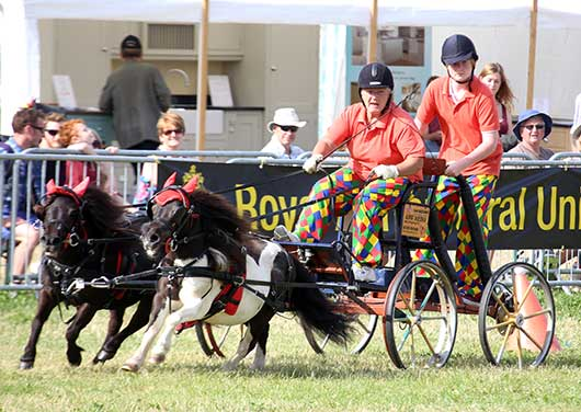 The Cotswold Show - One of the many events taking place in Cirencester