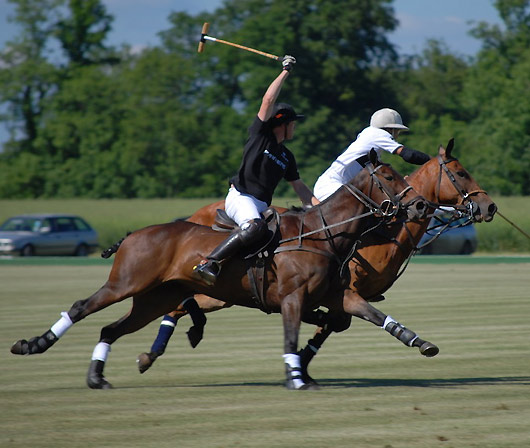 Cirencester Polo